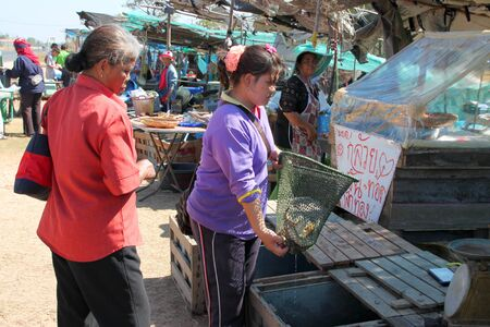 PAYAKKAPHUMPHISAI, MAHASARAKHAM - JANUARY 1 : The unidentified woman is selling fresh fishes on January 1, 2012 at outdoor fishes market, Payakkaphumphisai, Mahasarakham, Thailand. Stock Photo - 11728824