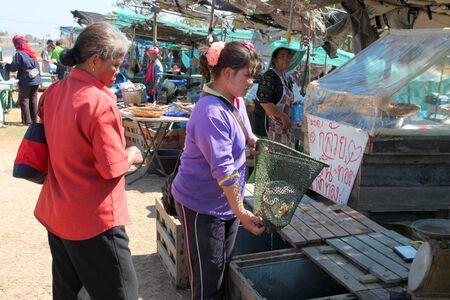 PAYAKKAPHUMPHISAI, MAHASARAKHAM - JANUARY 1 : The unidentified woman is selling fresh fishes on January 1, 2012 at outdoor fishes market, Payakkaphumphisai, Mahasarakham, Thailand. Stock Photo - 11728824