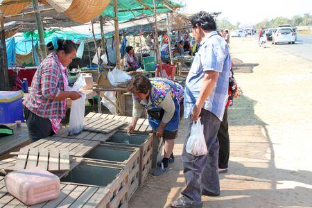 PAYAKKAPHUMPHISAI, MAHASARAKHAM - JANUARY 1 : The unidentified women are selling fresh fishes on January 1, 2012 at outdoor fishes market, Payakkaphumphisai, Mahasarakham, Thailand. Stock Photo - 11728818