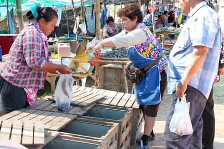 PAYAKKAPHUMPHISAI, MAHASARAKHAM - JANUARY 1 : The unidentified women are selling fresh fishes on January 1, 2012 at outdoor fishes market, Payakkaphumphisai, Mahasarakham, Thailand. Stock Photo - 11728829