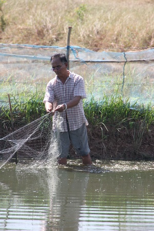 BORABUE, MAHASARAKHAM - DECEMBER 5 : The unidentified farmer is catching some fishes on December 5, 2011 at rural farmland, Borabue, Mahasarakham, Thailand. Stock Photo - 11728819