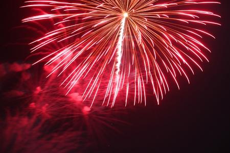 curare teneramente: I fuochi d'artificio bella e colorata nel cielo notturno