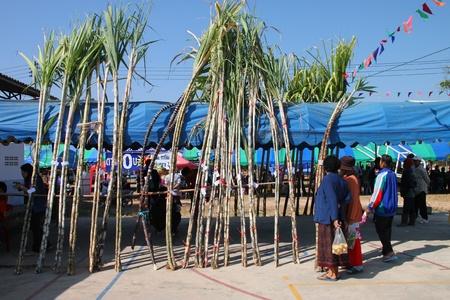 BORABUE, MAHASARAKHAM - JANUARY 6 : The unidentified tourists are in Rice Celebration Festival on January 6, 2012 at Borabue Local Administration Plaza, Borabue, Mahasarakham, Thailand. Stock Photo - 11817637