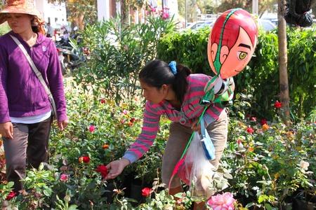 BORABUE, MAHASARAKHAM - JANUARY 6 : The unidentified woman is buying flowers in Rice Celebration Festival on January 6, 2012 at Borabue Local Administration Plaza, Borabue, Mahasarakham, Thailand. Stock Photo - 11817634
