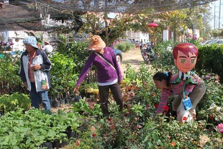 BORABUE, MAHASARAKHAM - JANUARY 6 : The unidentified woman is selling flowers in Rice Celebration Festival on January 6, 2012 at Borabue Local Administration Plaza, Borabue, Mahasarakham, Thailand. Stock Photo - 11817640