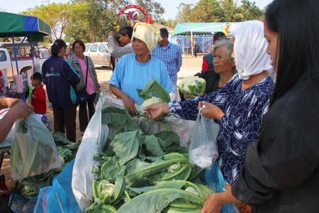BORABUE, MAHASARAKHAM - JANUARY 6 : The unidentified woman is buying vegetable in Rice Celebration Festival on January 6, 2012 at Borabue Local Administration Plaza, Borabue, Mahasarakham, Thailand. Stock Photo - 11817630
