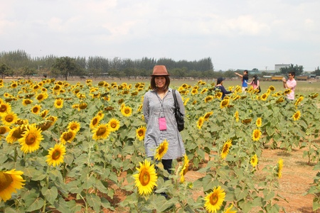 PAK CHONG, KORAT, THAILAND - JANUARY 15 : The unidentified tourists are visiting famous rural farmland on January 15, 2012 at Chok Chai Farm, Pak Chong, Korat, Thailand. Stock Photo - 11987848