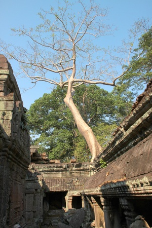 indo china: Ruin building in ancient Khmer architecture, Prasat Praeh Khan