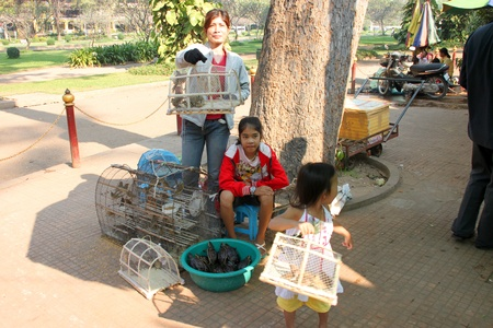 SIEMREAP, KHMER REPUBLIC - FEBRUARY 12 : The unidentified women are selling birds and turtles for someone who want to do religious merit on February 12, 2012 at City Pillar, Siemreap, Khmer Republic. Stock Photo - 12559626