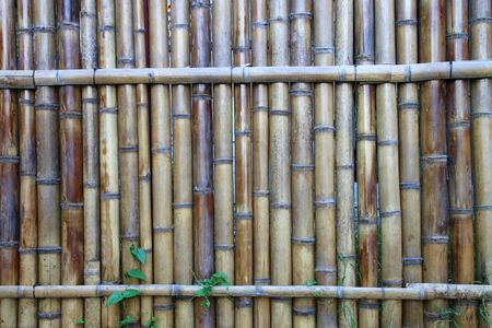 Rural Thai bamboo fence wall texture and background photo