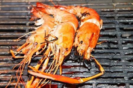 gridiron: Barbacoa de camarones a la parrilla en la estufa de carb�n parrilla