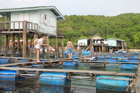 KOH SAMET, RAYONG - MAY 9 : Unidentified tourists are on the floating basket on May 9, 2012 at Koh Samet, Rayong, Thailand.
