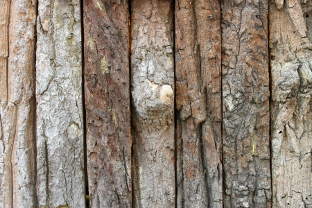 Wooden bark fence wall background photo