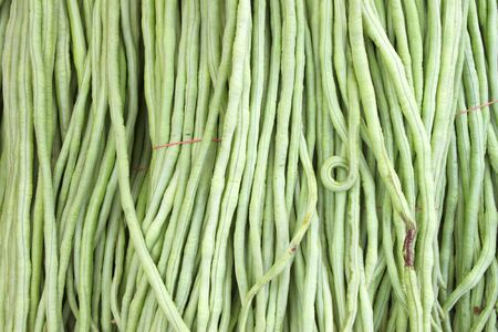 long bean: Cow-pea or long bean in background Stock Photo