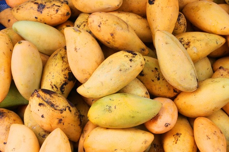 Piles of fresh and ripe tropical mangoes Stock Photo - 14457202