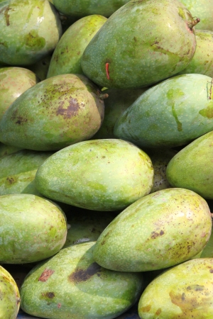 Piles of fresh and raw tropical mangoes photo