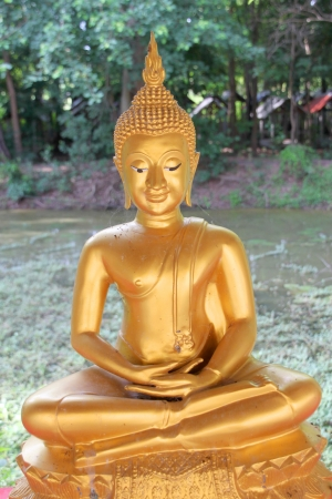Buddha statue in green forest environment photo