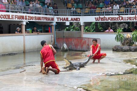 SAMUT PRAKAN, THAILAND - OCTOBER 17 : Unidentified men are performing in playing with crocodile show on October 17, 2010 at crocodile farm, Samut Prakan, Thailand.