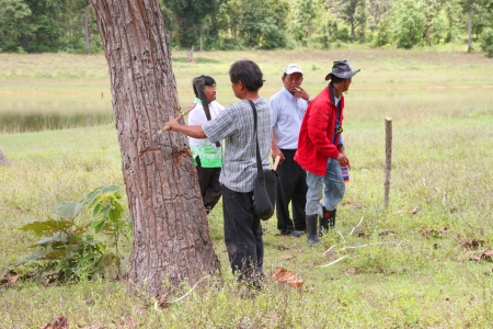 MUANG, MAHASARAKHAM - SEPTEMBER 10 : Unidentified men are surveying location area to build a big dam on September 10, 2012 at local reservoir, Bua Kor, Muang, Mahasarakham, Thailand. Stock Photo - 15156408