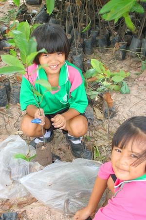 MUANG, MAHASARAKHAM - SEPTEMBER 27 : Unidentified school children are growing trees in Buddhist Lent festival on September 27, 2012 at Wat Nong Koon, Bua Kor, Muang, Mahasarakham, Thailand.