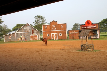 PAK CHONG, KORAT, THAILAND - OCTOBER 13 : The unidentified tourist is learning to ride a horse on October 13, 2012 at Chok Chai Farm, Pak Chong, Korat, Thailand.