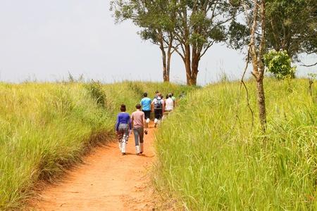 korat: KHAO YAI, PAK CHONG, KORAT - OCTOBER 14 : The unidentified tourists are walking to wildlife animal observation tower on October 14, 2012 at Nong Pak Chi, Khao Yai forest, Pak Chong, Korat, Thailand.