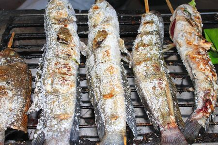 snakehead: Grilled snake-head fishes