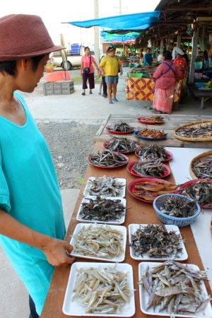 CHUMPONBURI, SURIN - NOVEMBER 10 : The unidentified woman is buying dried fishes on November 10, 2011 at outdoor fishes market, Chumponburi, Surin, Thailand.  Stock Photo - 17063349