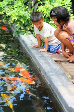 MUANG, BURIRAM - APRIL 8 : Unidentified children are looking at fishes in local aquarium garden park on April 8, 2012 at Muang, Buriram, Thailand. Stock Photo - 17063350