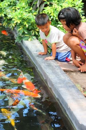 MUANG, BURIRAM - APRIL 8 : Unidentified children are looking at fishes in local aquarium garden park on April 8, 2012 at Muang, Buriram, Thailand. Stock Photo - 17063350