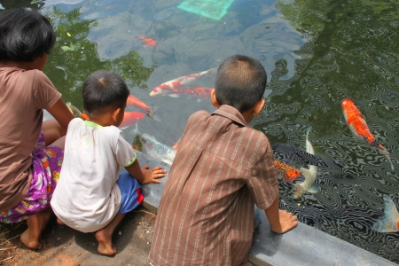 MUANG, BURIRAM - APRIL 8 : Unidentified children are looking at fishes in local aquarium garden park on April 8, 2012 at Muang, Buriram, Thailand. Stock Photo - 17063354
