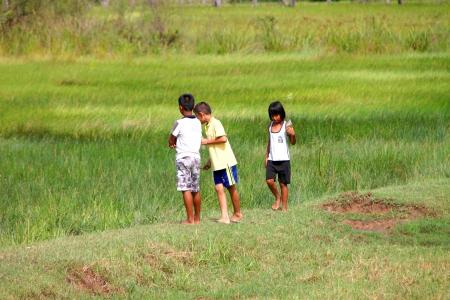 PAYAKKAPHUMPHISAI, MAHASARAKHAM - JULY 7 : Unidentified children are playing and seeking little fishes from rural field on July 7, 2012 at Payakkaphumphisai, Mahasarakham, Thailand. Stock Photo - 17063364