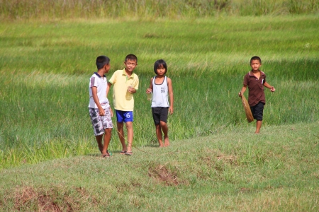 PAYAKKAPHUMPHISAI, MAHASARAKHAM - JULY 7 : Unidentified children are playing and seeking little fishes from rural field on July 7, 2012 at Payakkaphumphisai, Mahasarakham, Thailand. Stock Photo - 17063361