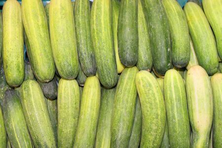 Pile of cucumbers in local fruit market of Thailand photo
