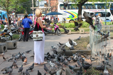 BANGKOK, THAILAND - JANUARY 5 : Unidentified woman is feeding birds in front of Wat Phra Kaew on January 5, 2013 at Grand Palace, Bangkok, Thailand.