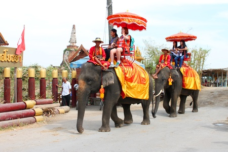 AYUTTHAYA, THAILAND - JANUARY 6 : Unidentified tourists are riding elephants  in Ayothaya Floating Market on January 6, 2013 at Ayutthaya, Thailand. Stock Photo - 17356149