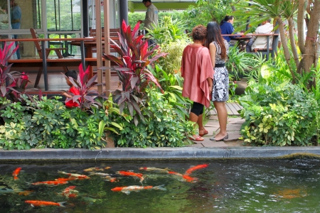 MUANG, BURIRAM - JANUARY 26 : Unidentified tourists are looking at fishes in local aquarium garden park on January 26, 2013 at Muang, Buriram, Thailand. Stock Photo - 17950154