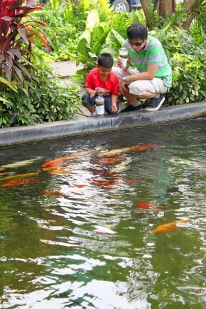 MUANG, BURIRAM - JANUARY 26 : Unidentified tourists are looking at fishes in local aquarium garden park on January 26, 2013 at Muang, Buriram, Thailand. Stock Photo - 17950151