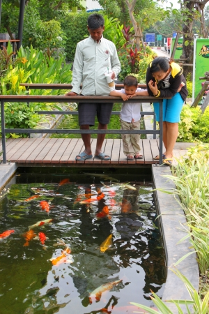 MUANG, BURIRAM - JANUARY 26 : Unidentified tourists are looking at fishes in local aquarium garden park on January 26, 2013 at Muang, Buriram, Thailand. Stock Photo - 17950146