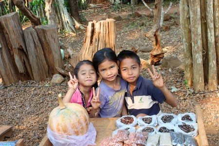 indo china: PAK SE, CHAMPASAK, LAO P.D.R. - JANUARY 13 : Unidentified children are selling local fruits at Pha Suam Waterfall on January 13, 2013 at Pak Se, Champasak, Lao P.D.R.