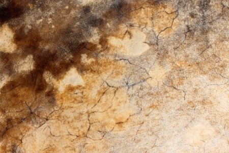 underlay: Dried brown cow skin as drumhead and grunge textured abstract background Stock Photo