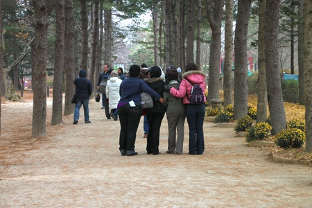 republic of korea: NAMINARA REPUBLIC, KOREA - NOVEMBER 26 : Unidentified tourists are visiting to winter garden and attraction places and taking photograph on November 26, 2011 at Nami island, Naminara Republic, Korea.