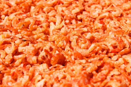 dried tiny prawns in local market photo