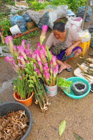 VANG TAO, LAO P D R  - JULY 28   Unidentified  woman is selling local flowers and fresh food at Thai - Lao border business center on July 28, 2013 in Vang Tao, Lao P D R