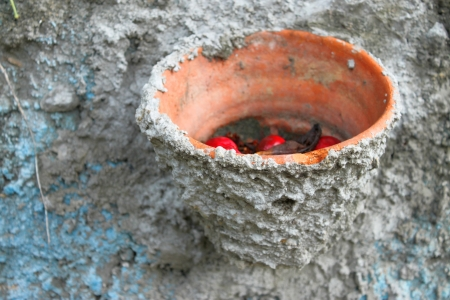 embed: flower pot embed in rough wall