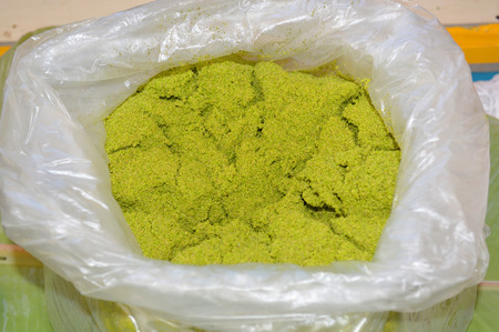 globosa: Wolffia globosa or Fresh water Alga, Water Meal, Swamp Algae
