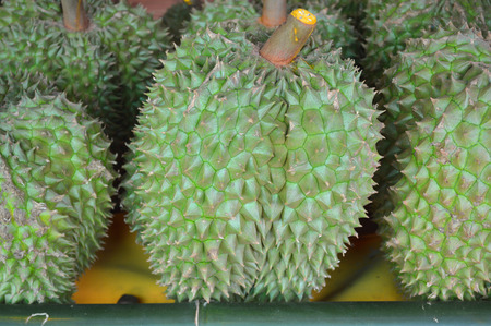 Durians from rural farm of East of Thailand photo