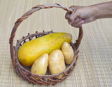 musk: musk melon and potato in basket and human hand