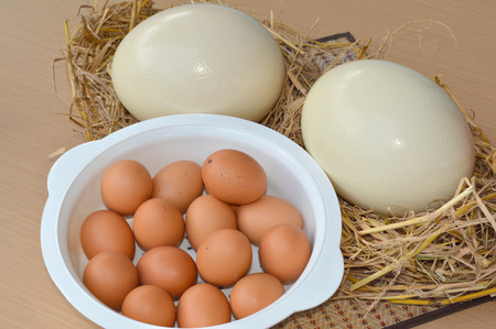 ostrich eggs and chicken eggs on table in kitchen photo