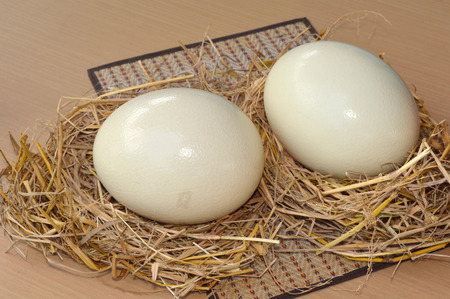 ostrich eggs in rice straw on table photo